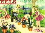 Eels eels2 1 24 jpg