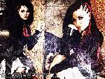 Evanescence Evanescence1187wp12 1 24 jpg