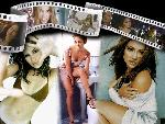 Jennifer Lopez Jennifer Lopez1165wp44 1 24 jpg
