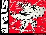Les rats lesrats6 1 24 jpg