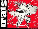 Les rats lesrats6 8  jpg
