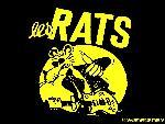 Les rats lesrats7 1 24 jpg