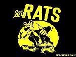 Les rats lesrats7 8  jpg