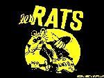 Les rats th lesrats7 jpg