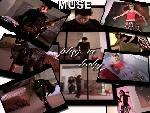 Muse th muse4j2 jpg