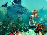 3d Divers 3d 62 jpg