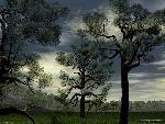 3d Paysage 3d paysage22 1 24 jpg