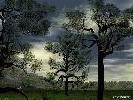 3d Paysage 3d paysage22 8  jpg