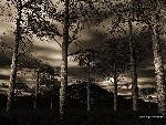 3d Paysage 3dpaysages15mars38 1 24 jpg