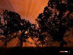 3d Paysage 3dpaysages15mars4 8  jpg