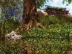 3d Paysage 3dpaysages15mars55 1 24 jpg
