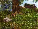 3d Paysage 3dpaysages15mars55 8  jpg