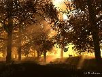 3d Paysage 3dpaysages15mars84 1 24 jpg