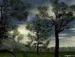 3d Paysage th 3d paysage22 jpg