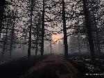 3d Paysage th 3d paysage61 jpg