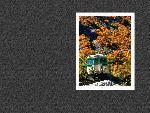 estampes automne aki312 1 24 jpg