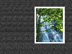 estampes chute d eau taki11 1 24 jpg