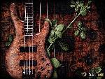 guitare guitare 12 jpg