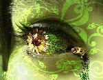 yeux yeux oeil 8 jpg