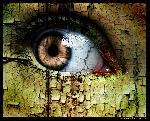 yeux yeux oeil 11 jpg