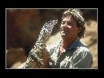 Steve Irwin Steve Irwin  3 jpg