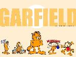 Gardfield garfield1 8  jpg