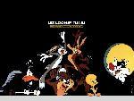 Looney tunes looney tunes4 1 24 jpg
