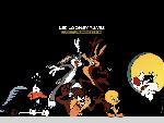 Looney tunes looney tunes4 8  jpg