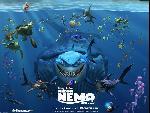 Nemo nemos4 8  jpg