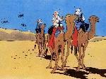 Tintin th tintin2 jpg