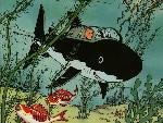 Tintin th tintin3 jpg