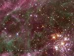 etoiles star 2 jpg