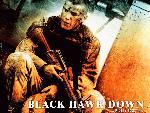la chute du faucon noir la chute du faucon noir 5 jpg