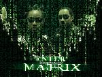 matrix 1Desktop 1 1 24x768 jpg