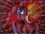 spider man spider man 11 jpg