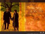 un automne a new york un automne a new york 3 jpg