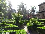 architecture islamique Al Hambra in Granada  Spain garden jpg