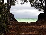 bahamas bahamas   jpg