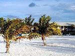 bahamas bahamas 1 jpg