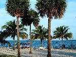 bahamas bahamas 2 jpg