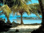 caribbean caribbean 1 jpg