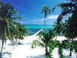 caribbean caribbean 11 jpg