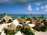 caribbean caribbean 4 jpg