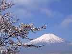 japan 16 fuji 3 4 jpg