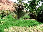 marocco marocco 18 jpg