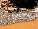 marocco marocco 2 jpg