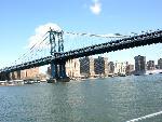 new york new york   jpg