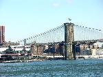 new york new york 1 jpg