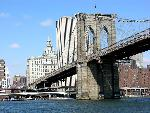 new york new york 12 jpg