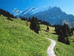 suisse Bernese Oberland Switzerland jpg